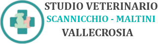 Studio Veterinario Dr.ssa Monica Scannicchio - Dr.ssa Raffaella Maltini